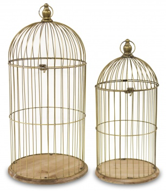 Decorative cage